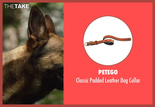 PetEgo collar from Max seen with No Actor (Max)