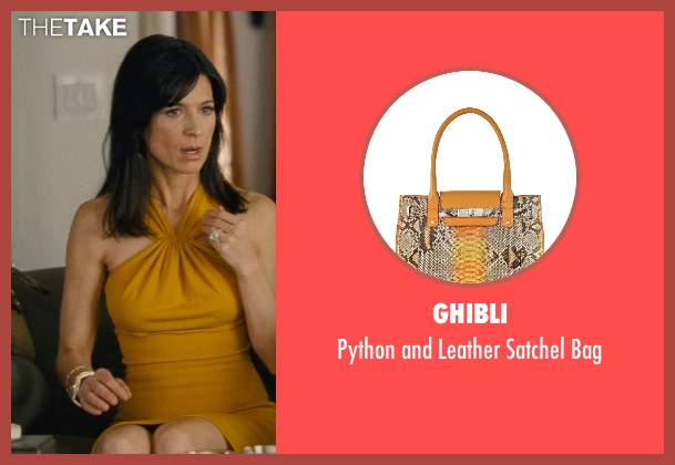 Ghibli brown bag from Entourage seen with Perrey Reeves (Melissa Gold)