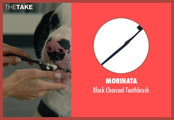 Morihata toothbrush from The Other Woman