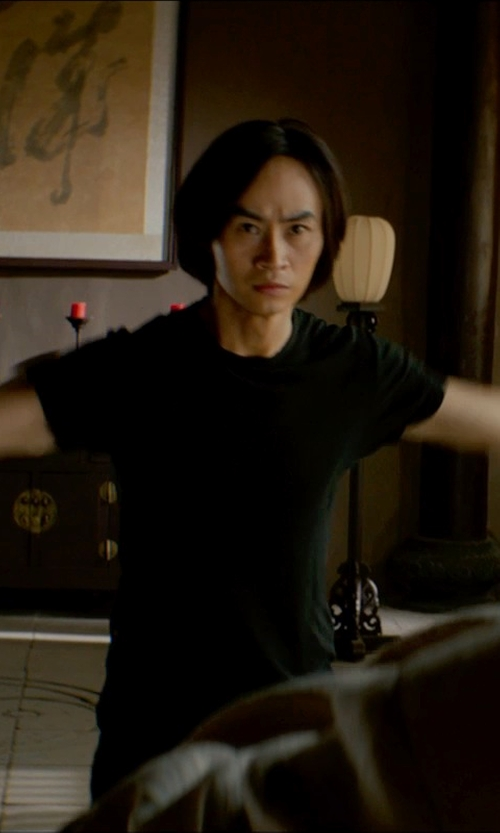 Tiger Hu Chen with Chapter Yuri Tee in Man of Tai Chi