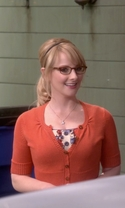 The Big Bang Theory - Season 9 Episode 12 - The Sales Call Sublimation