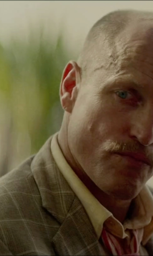 Woody Harrelson with Woolrich Checked Design Blazer in Triple 9