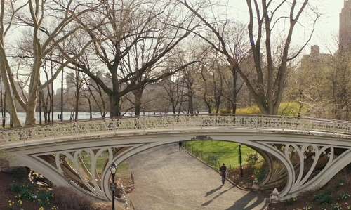 Unknown Actor with Gothic Bridge(Central Park) New York City, NewYork in Collateral Beauty
