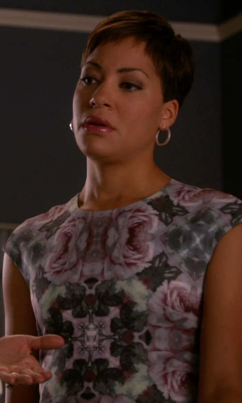 Cush Jumbo with Adrianna Papell Cap Sleeve Sequin Chiffon Dress in The Good Wife