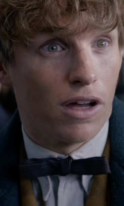Eddie Redmayne with Anto Bespoke Dress Shirt in Fantastic Beasts and Where to Find Them