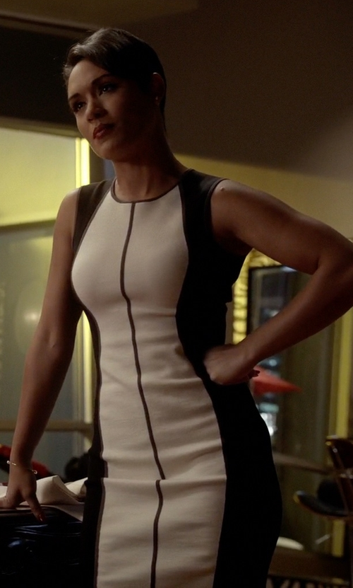 Grace Gealey with Narciso Rodriguez Angled Colorblock Sheath Dress in Empire
