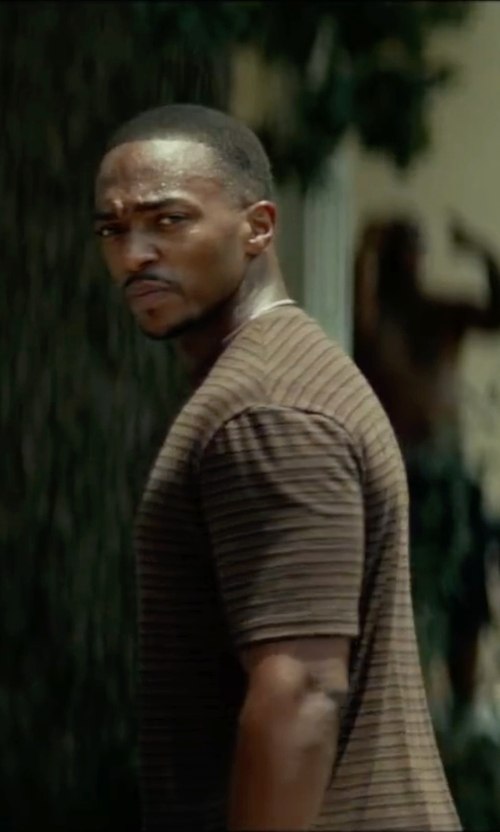 Anthony Mackie with Swell Afends We've Tee Shirt in Triple 9