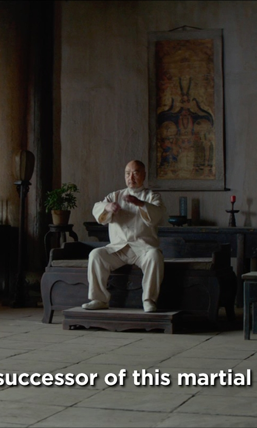 Hai Yu with Double Star Canvas Tai Chi Shoes in Man of Tai Chi