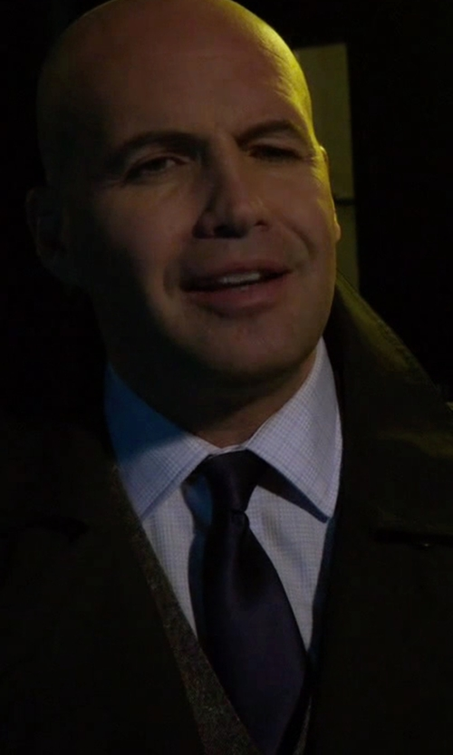 Billy Zane with Lanvin Grosgrain Solid Tie in Guilt