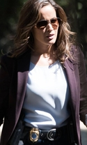 Rosewood - Season 2 Episode 5 - Spirochete and Santeria