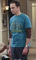 The Big Bang Theory - Season 9 Episode 13 - The Empathy Optimization