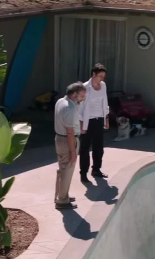 Mandy Patinkin with Arrow Men's Pleated Micro Pant in Wish I Was Here
