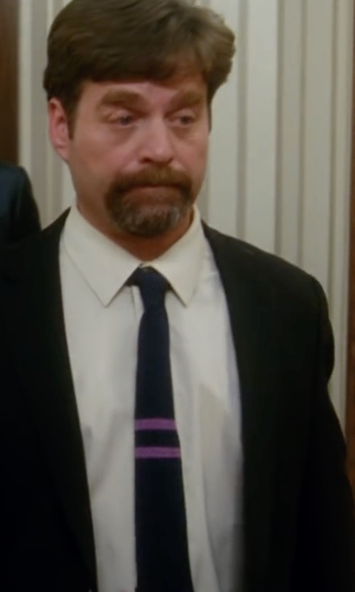 Zach Galifianakis with Lanvin Knit Silk Tie in Keeping Up with the Joneses