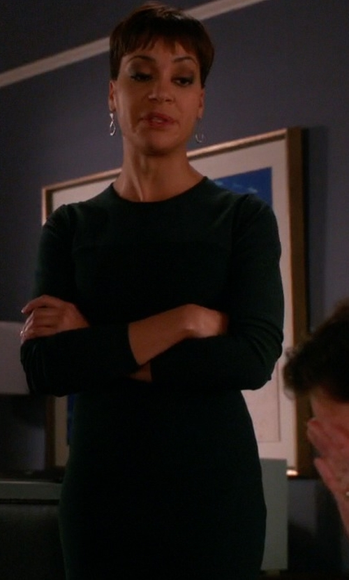 Cush Jumbo with Cynthia Steffe Zoe Seamed Ponte Knit Dress in The Good Wife