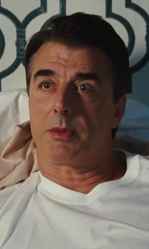 Chris Noth with James Perse Crew Neck Cotton Jersey T-Shirt in Sex and the City 2