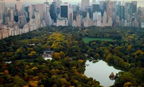 Unknown Actor with Central Park New York City, New York in The Proposal