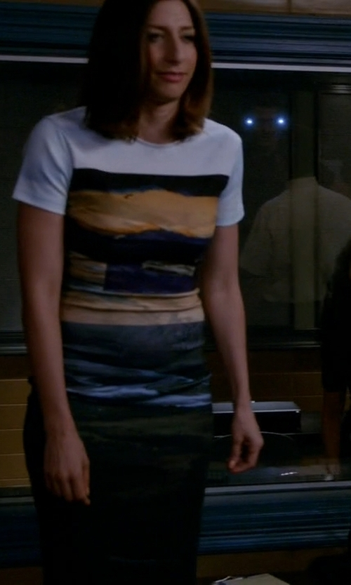Chelsea Peretti with McQ Alexander McQueen	 Short-Sleeve Landscape-Print Body-Conscious Dress in Brooklyn Nine-Nine