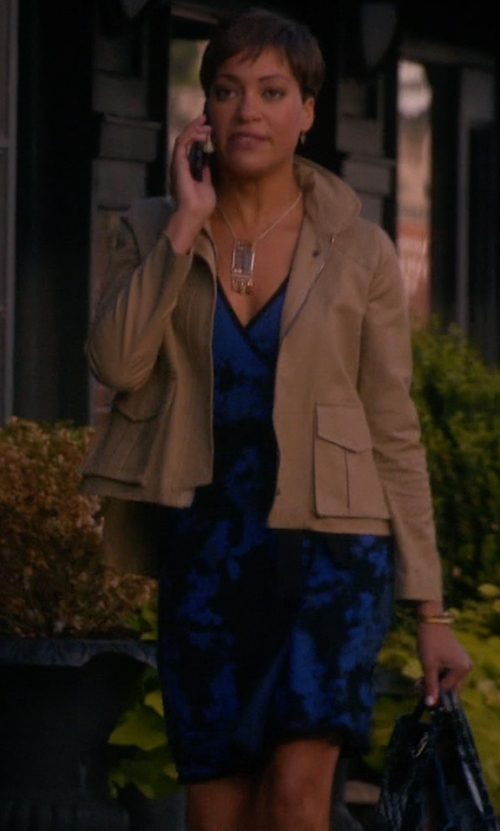 Cush Jumbo with Adrianna Papell Sleeveless V-Neck Print Dress in The Good Wife