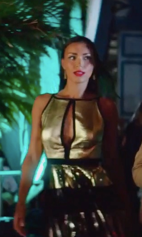 Ilfenesh Hadera with Proenza Schouler Pleated Metallic Dress in Baywatch