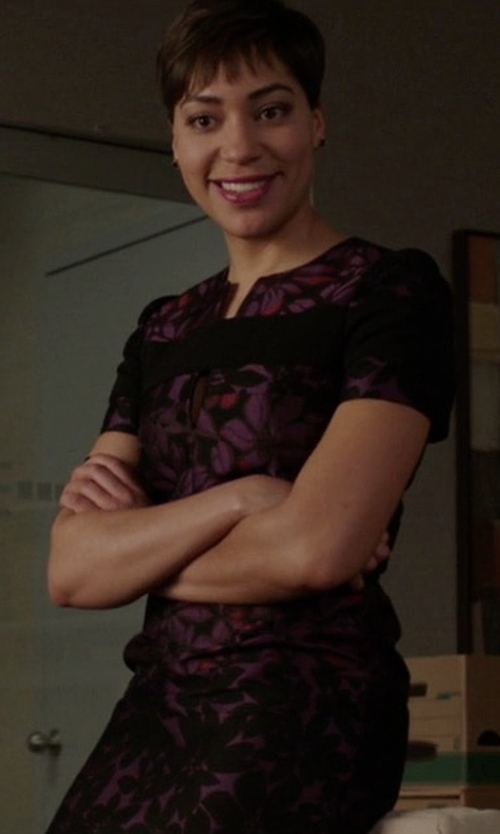 Cush Jumbo with Whistles Maria Floral-Print Dress in The Good Fight