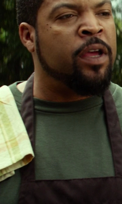 Ice Cube with DII Green Garden Plaid Heavy Weight Essentials Dishtowel in Ride Along