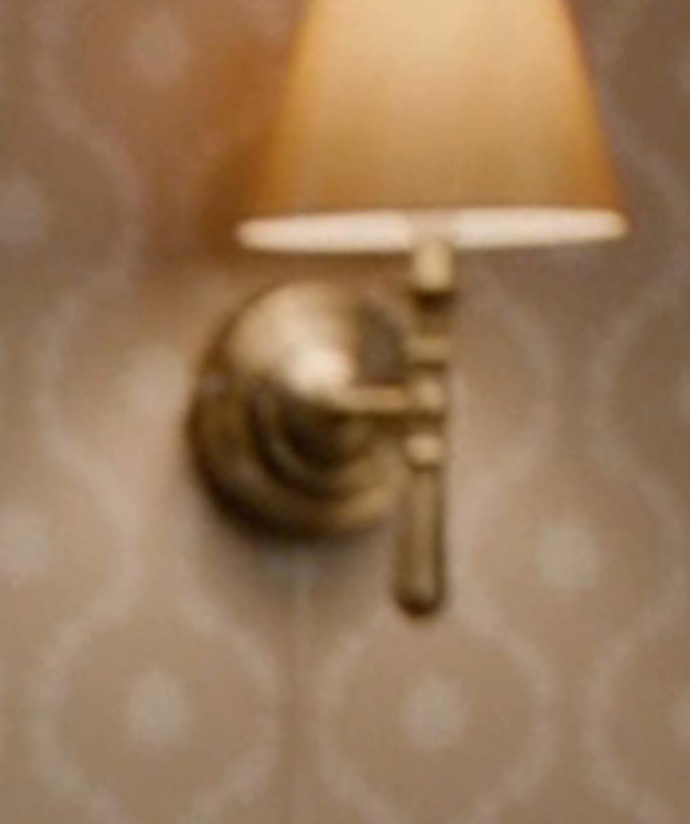 Pacific Coast Lighting Brand Maison Swing Arm Wall Lamp in Vampire Academy