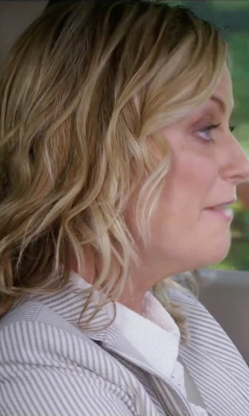 Amy Poehler with Gold Case Striped Blazer in Sisters