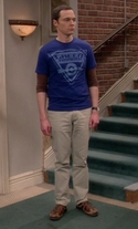 The Big Bang Theory - Season 9 Episode 21 - The Viewing Party Combustion