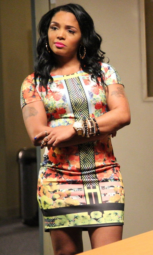 Rasheeda with Adrianna Papell Painted Print Sheath Dress in Rosewood
