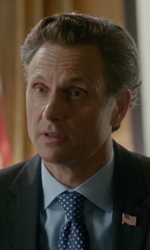 Tony Goldwyn with Salvatore Ferragamo Owl-Print Silk Tie in Scandal