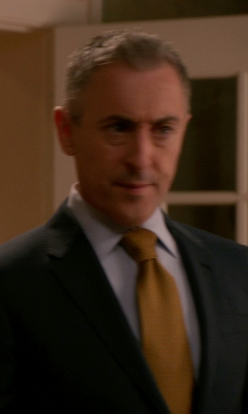 Alan Cumming with Forzieri Solid Woven Silk Tie in The Good Wife