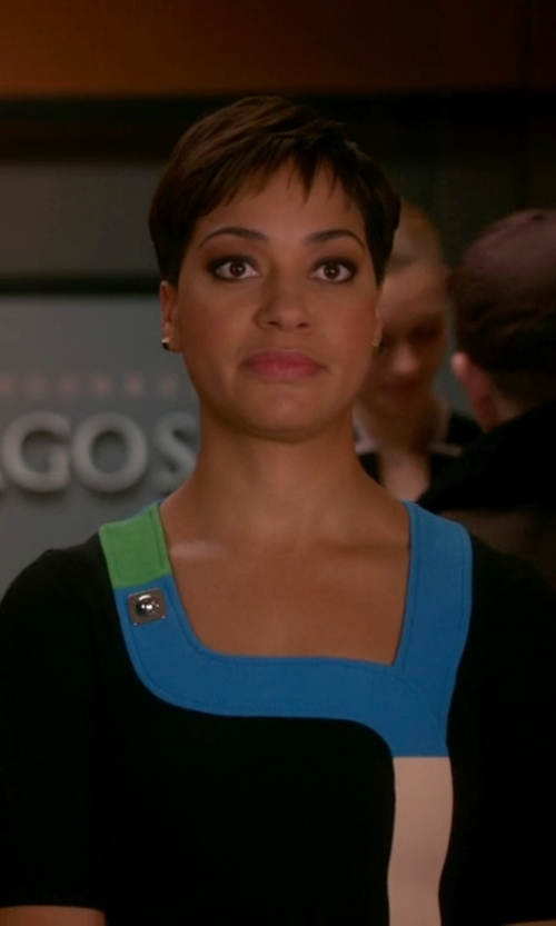 Cush Jumbo with Peter Pilotto Tailored Dress with Multicolored Trim and Stud Embellishment in The Good Wife