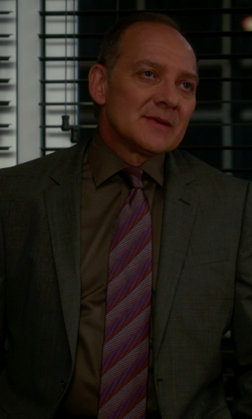 Zach Grenier with Isaia Mixed Print Silk Tie in The Good Wife