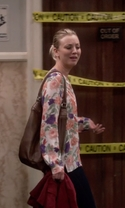 The Big Bang Theory - Season 9 Episode 8 - The Mystery Date Observation
