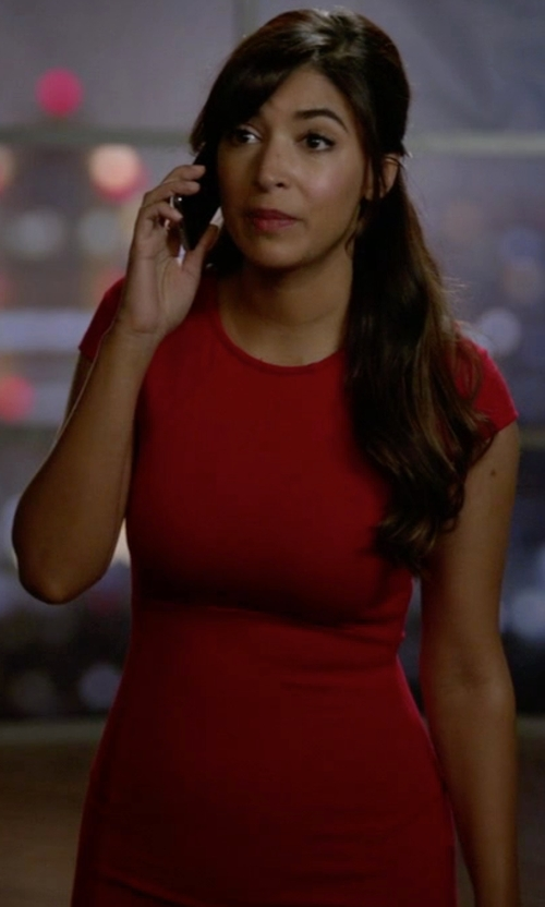 Hannah Simone with Love...Ady Cap Sleeve Bodycon Dress in New Girl