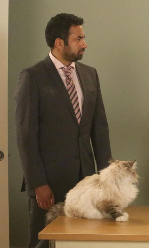 Kal Penn with Armani Collezioni Two Piece Suit in New Girl