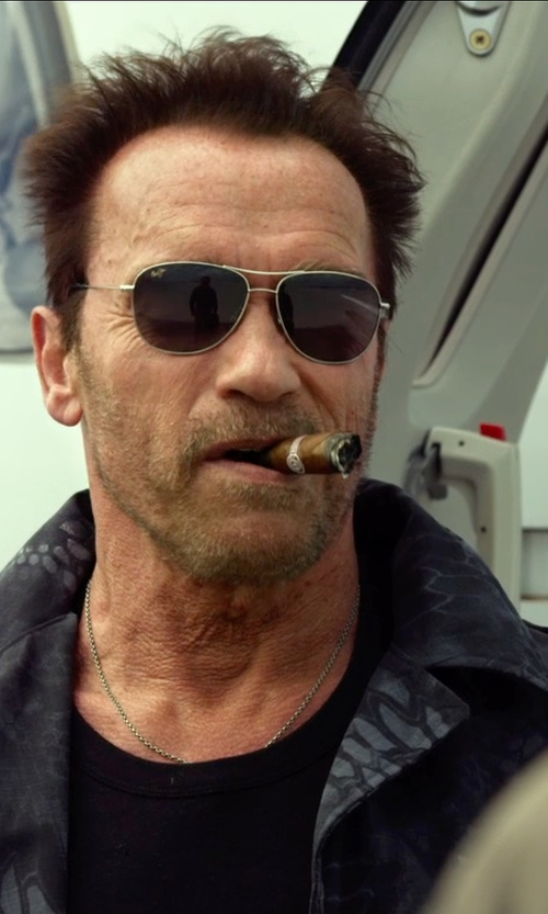 Arnold Schwarzenegger with Ray-Ban RB3362 Cockpit Sunglasses in The Expendables 3