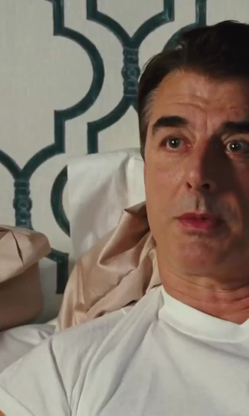 Chris Noth with Fishers Finery Pure Silk Luxury Pillow Case in Sex and the City 2