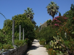 Trsteno, Croatia by Trsteno Arboretum in Game of Thrones