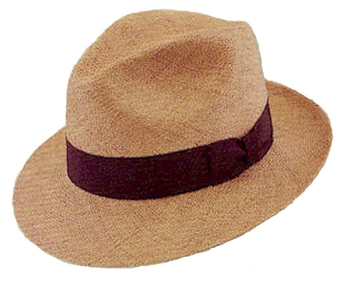 Hampton Panama Hat by Stetson in Youth