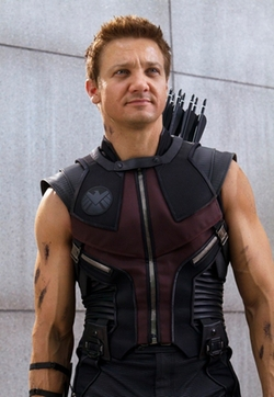 Custom Made Hawkeye Sleeveless Soldier Costume by Alexandra Byrne (Costume Designer) in Avengers: Age of Ultron