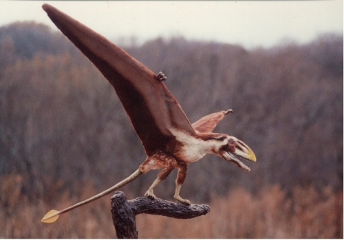 Dimorphodon by Seth Engstrom & Dean Sherriff (Concept Artist) in Jurassic World