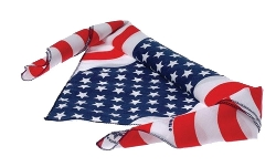 Stars & Stripes Bandana by Carolina in Magic Mike XXL
