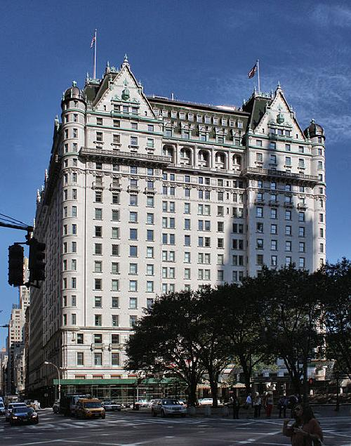 The Plaza Hotel New York City, New York in The Great Gatsby