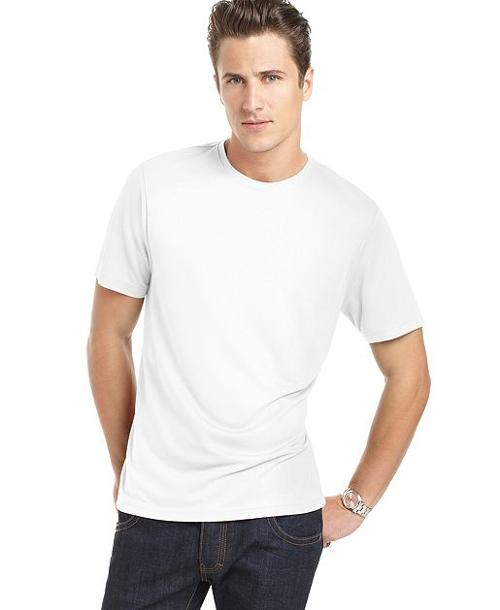 Core Luxe Crew Neck T-Shirt by Perry Ellis in Transcendence