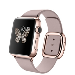 Rose Gold Case with Rose Gray Modern Buckle Watch by Apple  in Pretty Little Liars