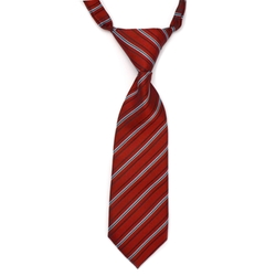 Medallion Tie by Brooks Brothers in Pitch Perfect 2