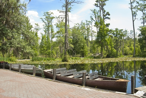 Cypress Gardens Charleston County, South Carolina in The Notebook