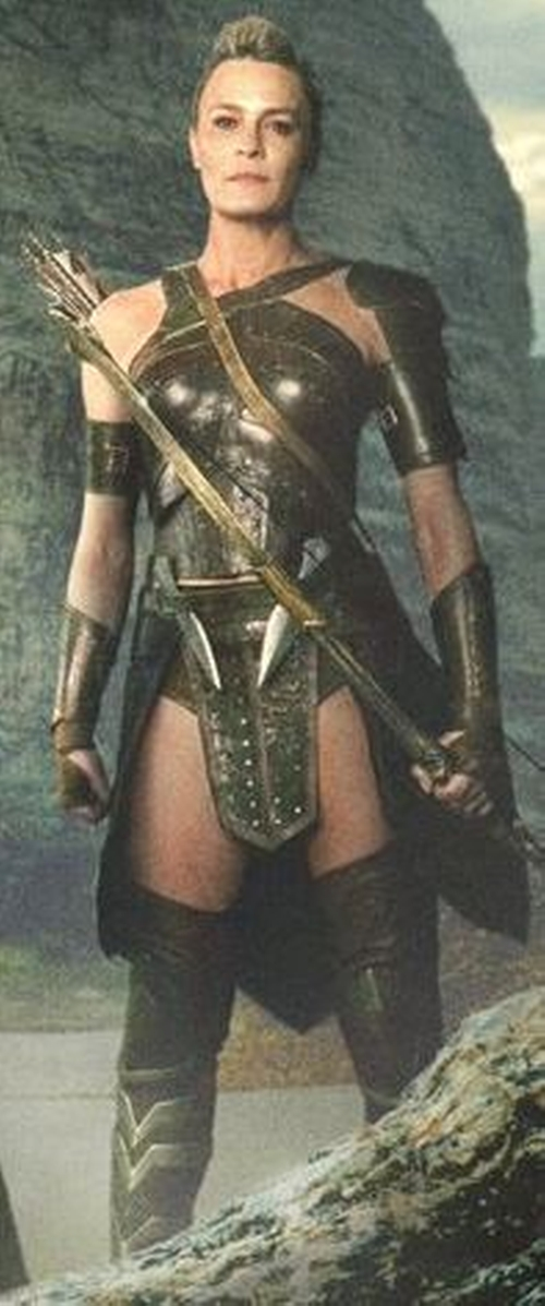 Custom Made Amazon Costume (General Antiope) by Lindy Hemming (Costume Designer) in Wonder Woman