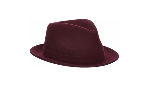Lite Felt Hiro Trilby Fedora Hat by Kangol in Popstar: Never Stop Never Stopping